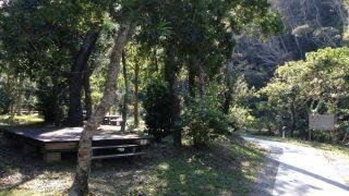 やんばるの森で涼しくキャンプ!比地大滝キャンプ場情報