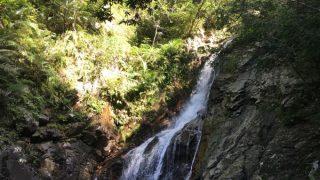 比地大滝へ自然豊かなやんばるの森をトレッキングしてきました
