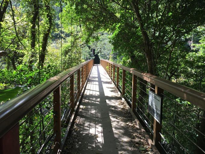 比地大滝 吊り橋