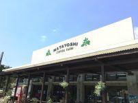 又吉コーヒー園3